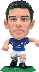 Tim Cahill   Everton Home